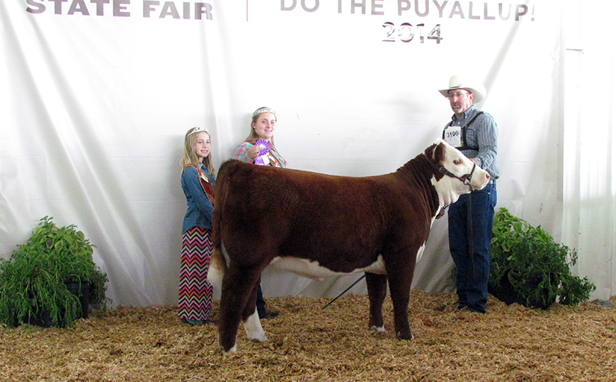 Show Success 2014 Calf Champ WSF crop