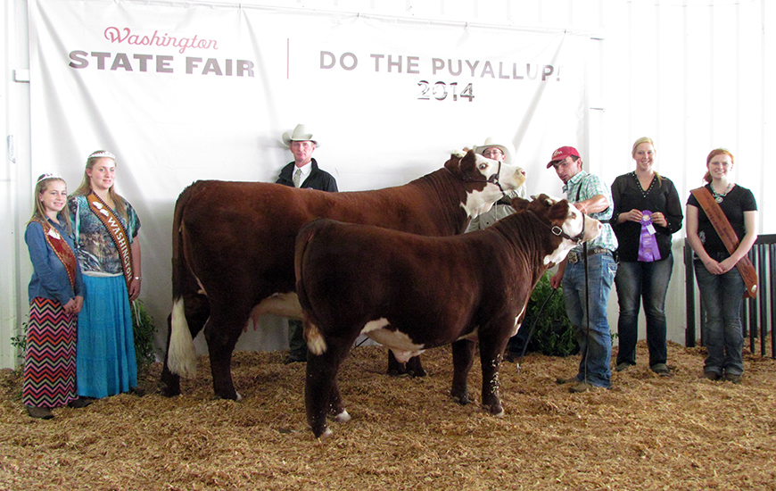 Show Success 2014 Horned WSF crop